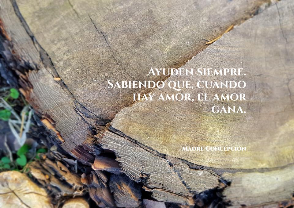 Frases de Nuestra Madre 01