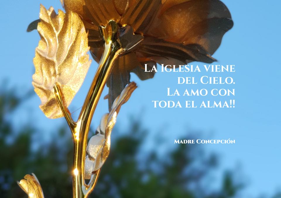 Frases de Nuestra Madre 06